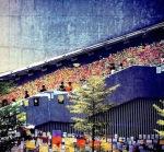 "The ""Lennon Wall"" in Hong Kong"